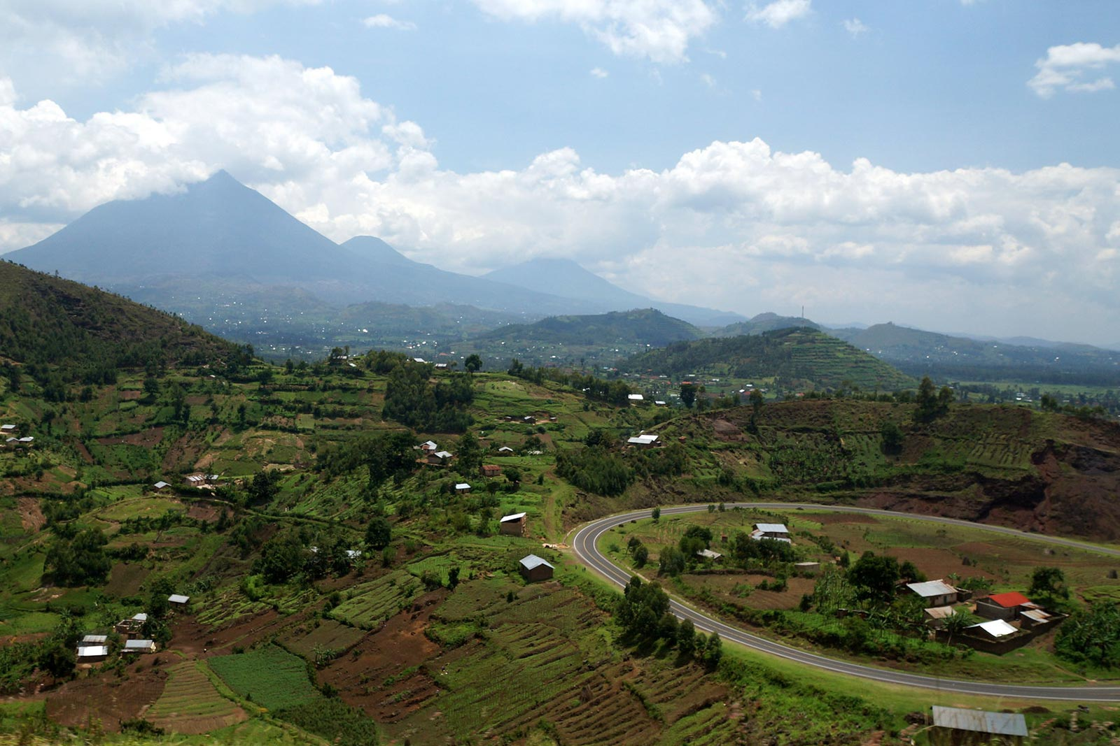 Day 3: Transfer to Bwindi Impenetrable Forest