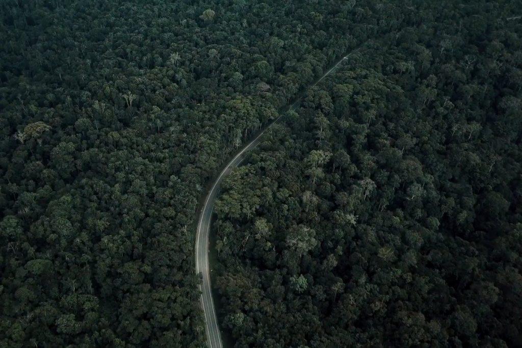 Fort Portal Kmwenge Road through Kibale Forest