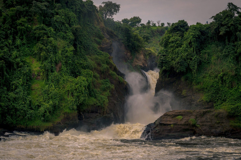 Day 11: Murchison Falls National Park
