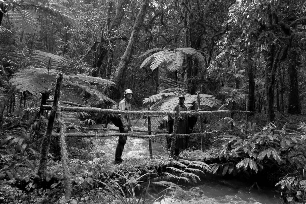 Nature Walks in Buhoma Sector, inside Bwindi Impenetrable Forest - What Else, Other Activities