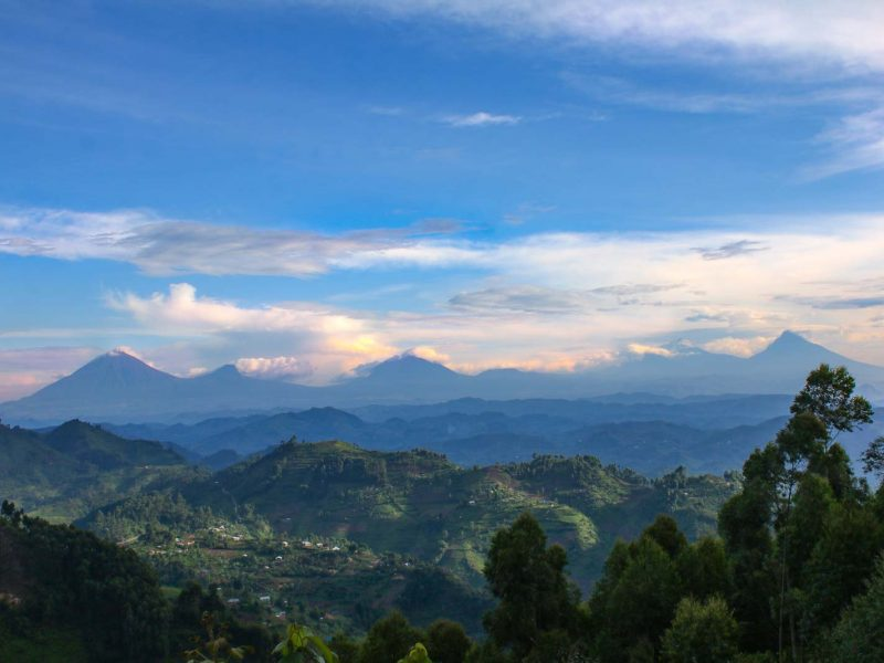 Nkuringo Sector: The Gorilla Town in The South of Bwindi Impenetrable National Park