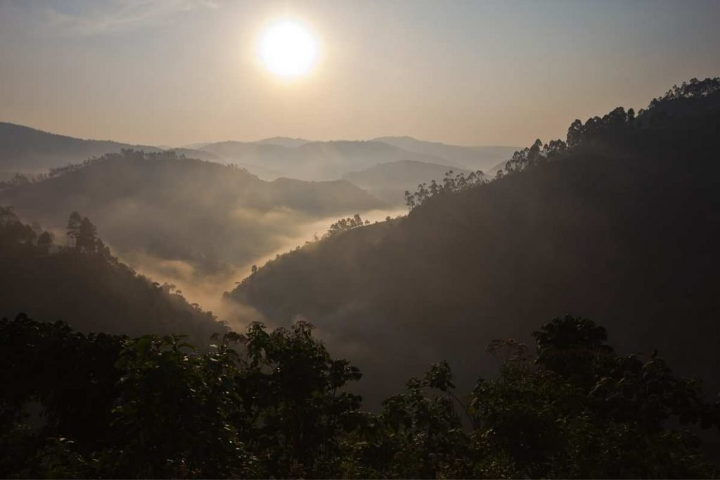 The stunning misty Bwindi Impenetrable National Park sunset - Most Popular Safari Destinations in East Africa